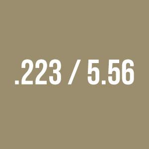 .223 / 5.56